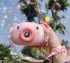 Γουρουνακι Ροζ καμερα - μπουμπουληθρες (oem)